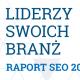 raport seo 2015