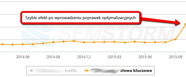 Efekty optymalizacji sklepu internetowego
