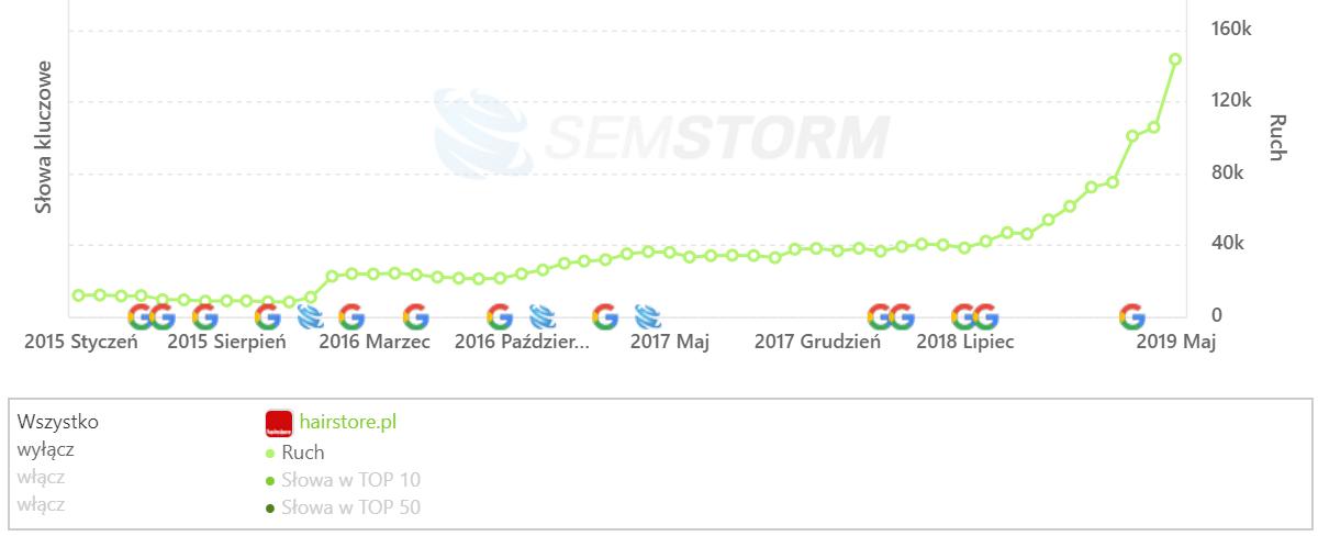 [hairstore.pl] Analiza stron _ SEMSTORM