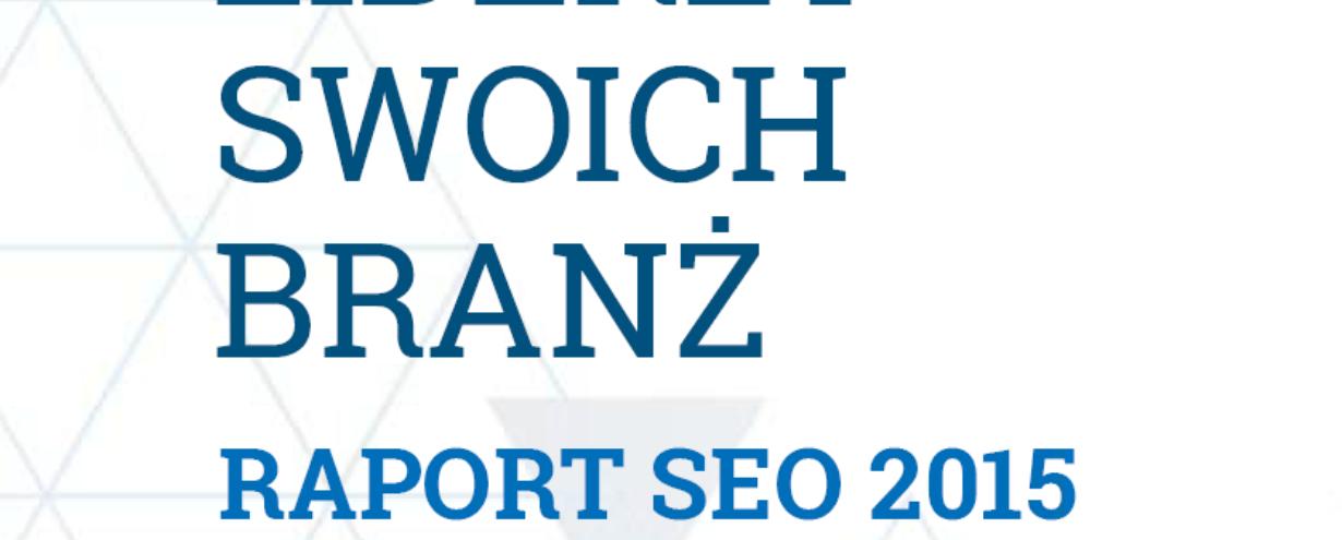 Raport SEO 2015 – liderzy swoich branż